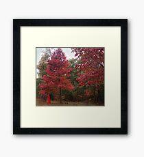 Rouge Autumn 1 Framed Print