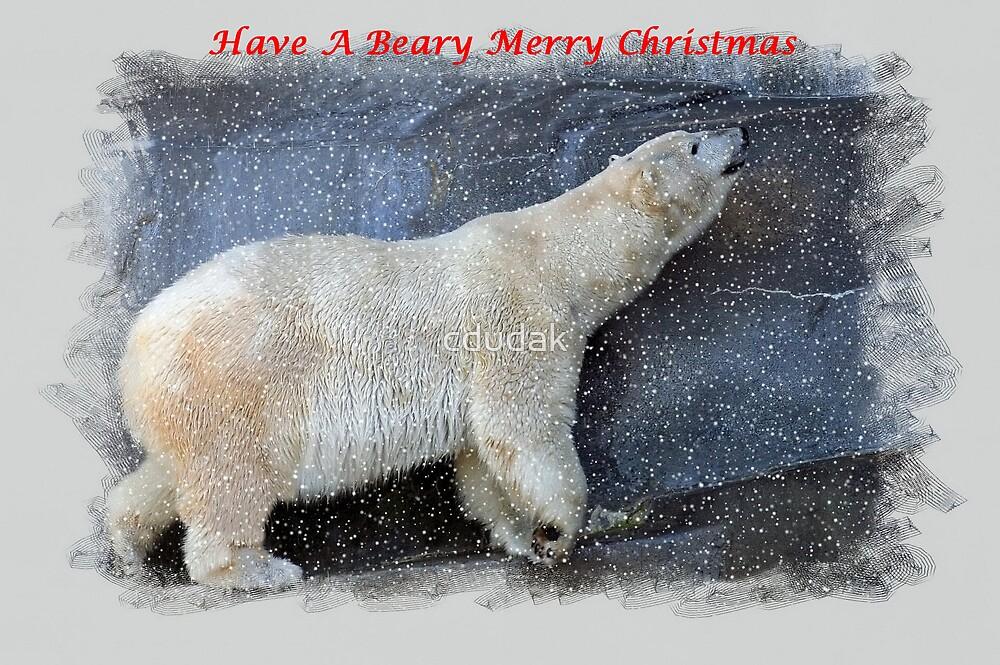 A BEARY MERRY CHRISTMAS by cdudak