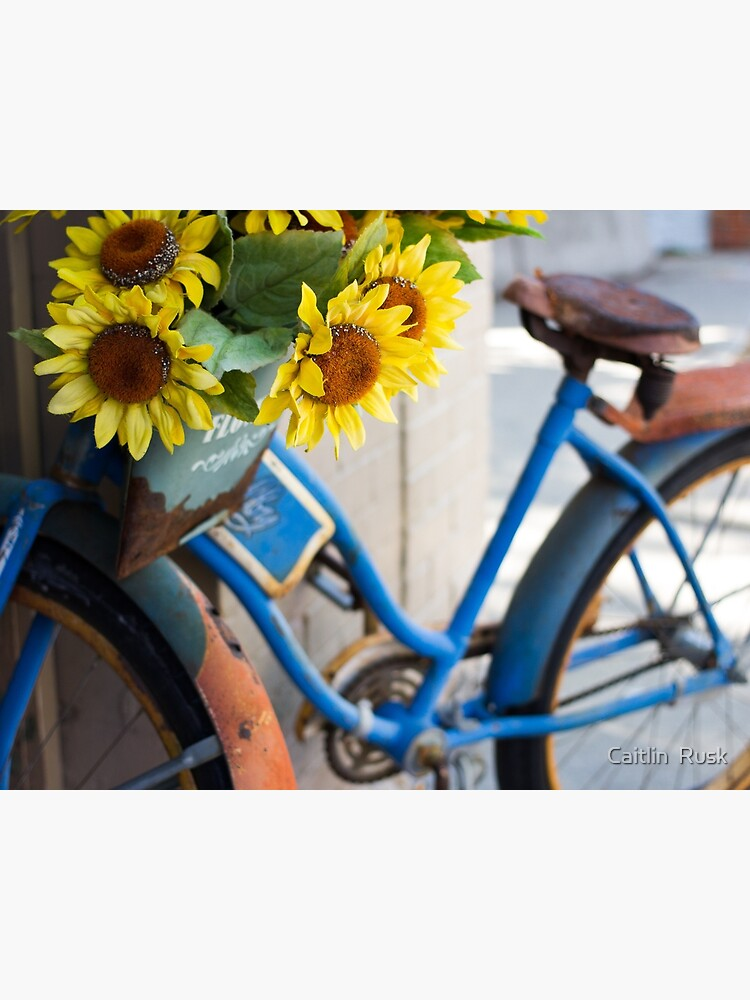 Sunflowers by cait-j