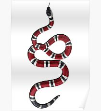 Gucci Snake Poster