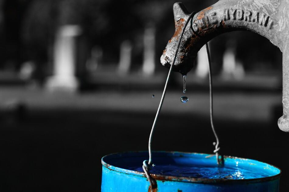 Liquid Assets by Michael Gatch