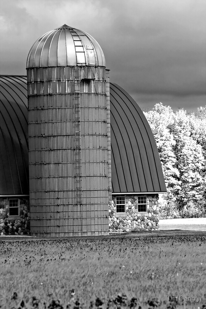 ~ The Silver Domed Silo ~ by Tim Denny