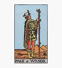 Tarot Card - Page of Wands Photographic Print