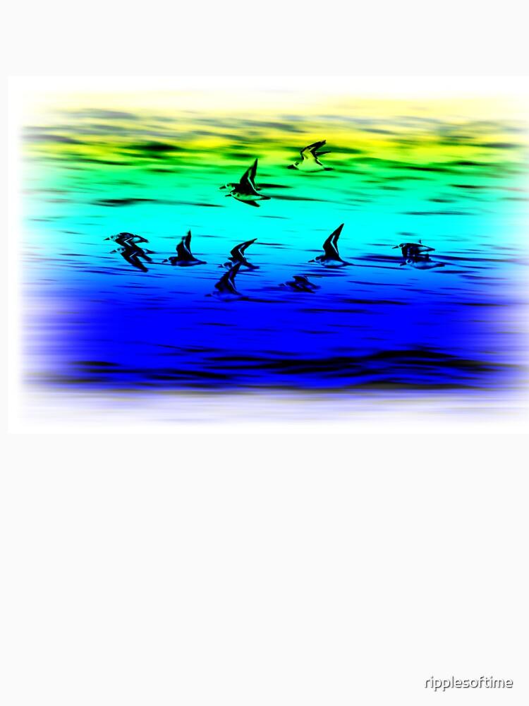Sanderlings flying by ripplesoftime