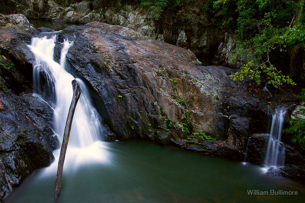Crystal Cascades • Cairns • Queensland by William Bullimore