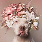 Flower Power, Minnie by SophieGamand