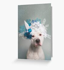 Flower Power, Polar Bear Greeting Card