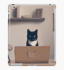Eco Friendly Corporate Cat iPad Case/Skin