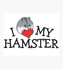 I Heart Hamsters Dwarf Photographic Print