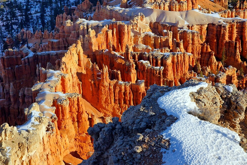 Bryce Canyon Sunrise by Harry Oldmeadow