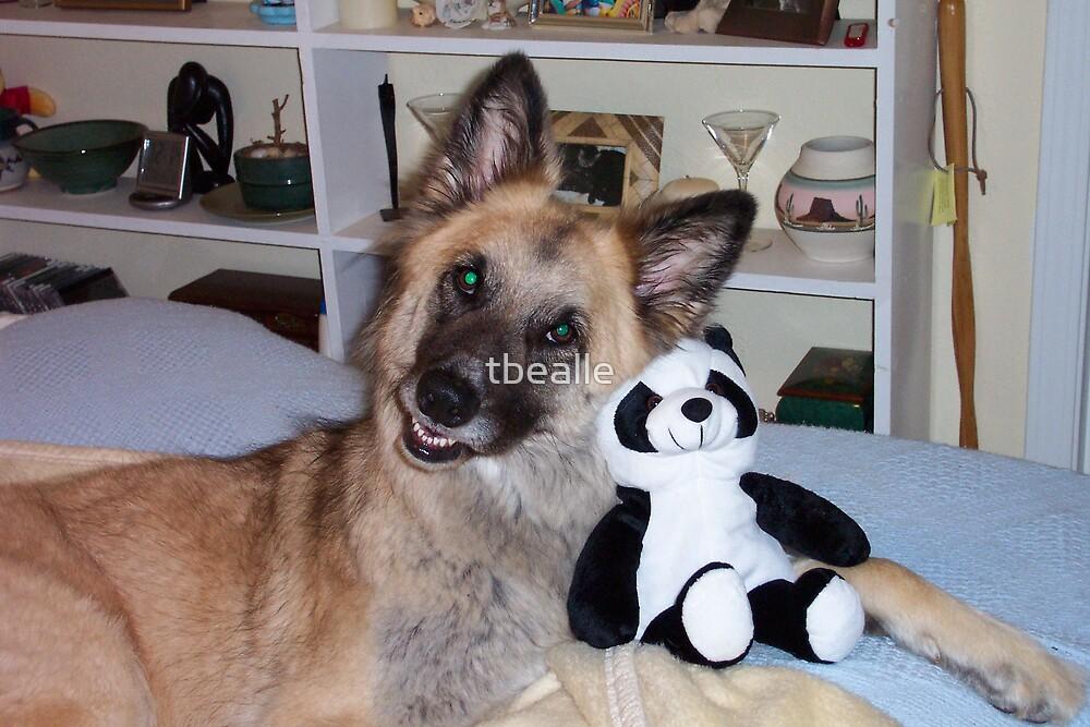 Cody and his Pal the Panda by Terri~Lynn Bealle