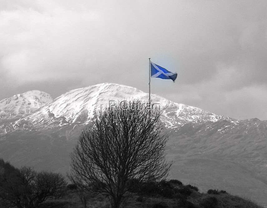 Saltire by R Outram
