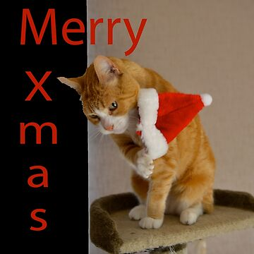 Christmas Card with Cat by styles