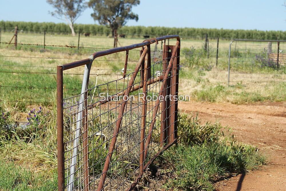 Rusty Gate by Sharon Robertson