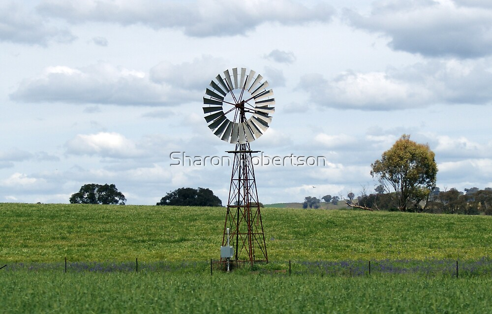 Windmill Middle by Sharon Robertson
