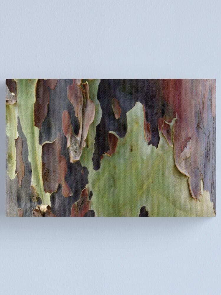 Alternate view of Blistering Gum Bark Canvas Print