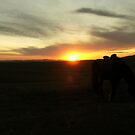 Steppe sunset by mantahay