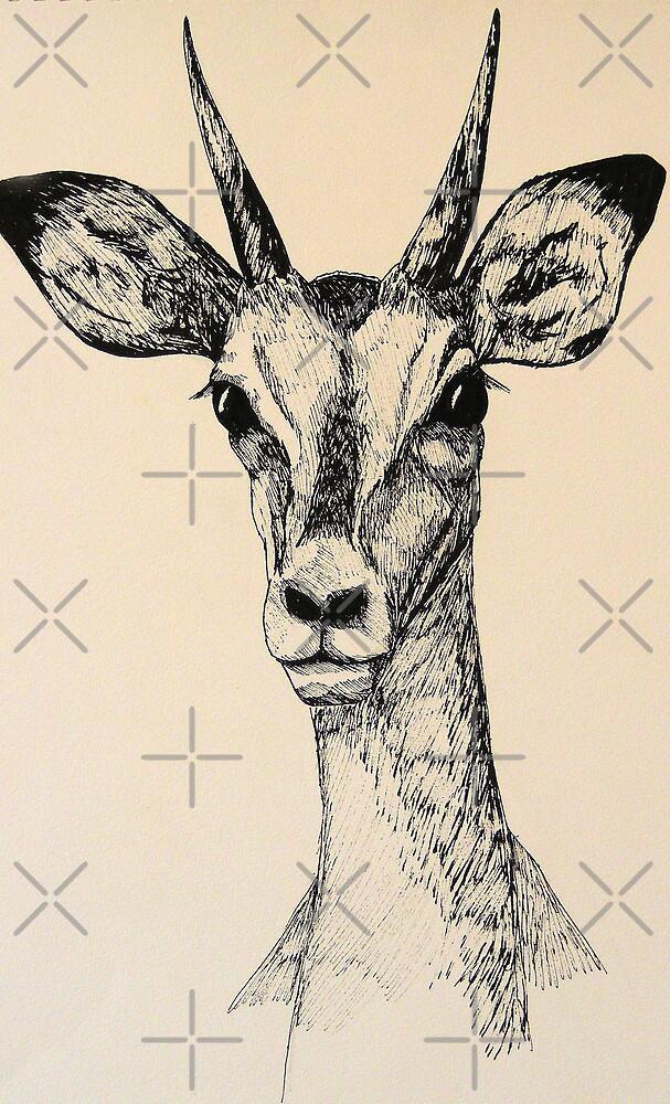 Impala by dnlddean