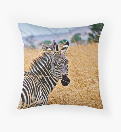 Zebra Flair Throw Pillow