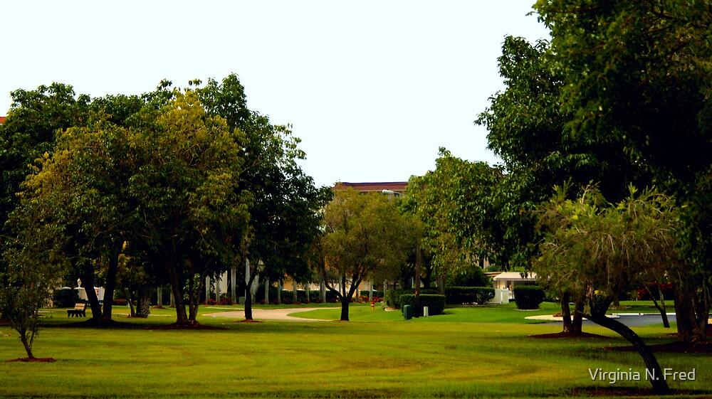Jaycee Park by Virginia N. Fred