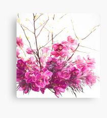 Serene Pink Phalaenopsis Orchids  Canvas Print