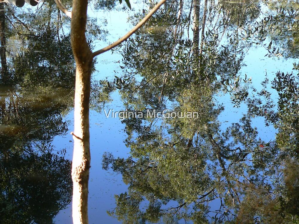 Saturday Garden Pond by Virginia McGowan