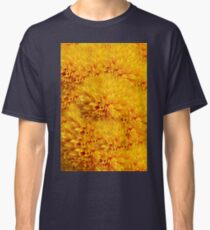 sunflower in bloom in the garden Classic T-Shirt