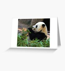 I Love my Bamboo, has 443 viewings, 9 COMMENTS 1 sale Greeting Card