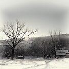 Snow Scene by denise romano