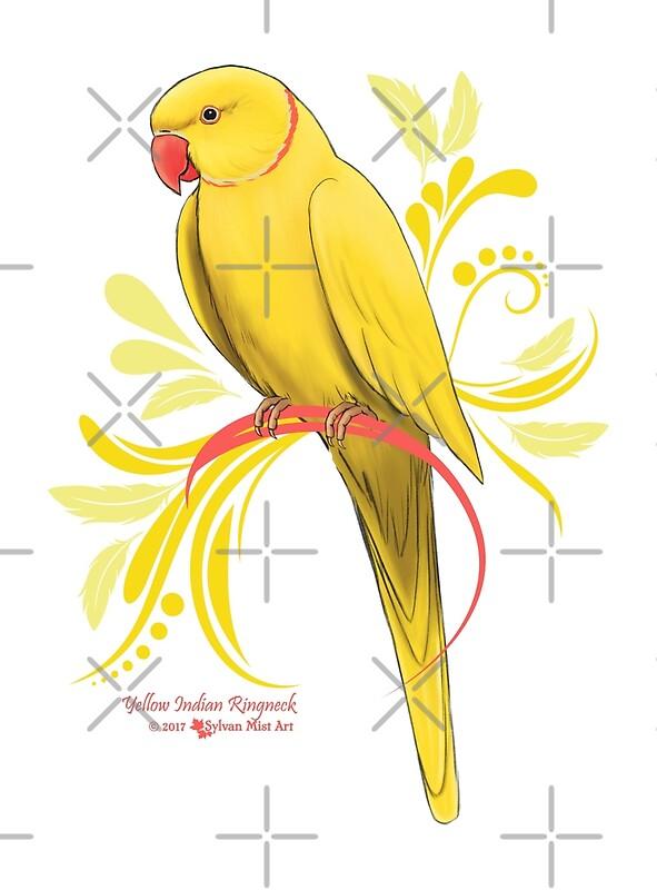 Yellow Indian Ringneck Parrot\