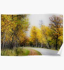 Autumn Colours III Poster
