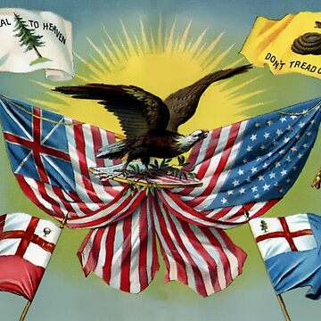 AMERICAN, First National Flag, School Text; 'A Brief History of the United States', 1880 by TOMSREDBUBBLE