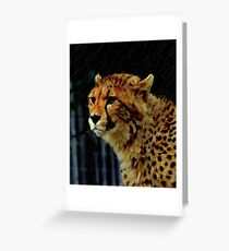 drybrush Cheetah Greeting Card
