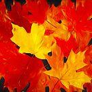 Leaves on Fire by Eileen McVey