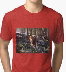 Scottish Highland Cattle Calf 1358 Tri-blend T-Shirt