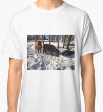 Scottish Highland Cattle Cow and Calf 1361 Classic T-Shirt