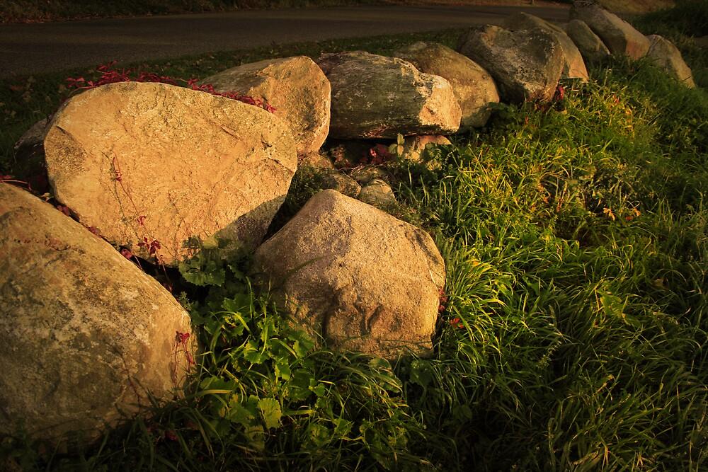 Sunset Stones by John  Goodman