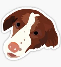 Allie's Dog Sticker