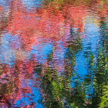 reflection trees by baji