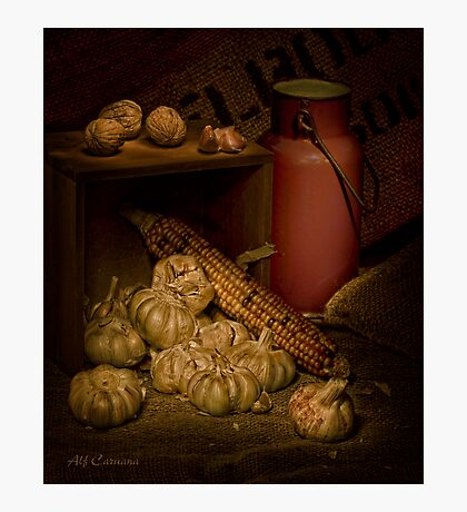 Old Masters Series (Print 9) Photographic Print