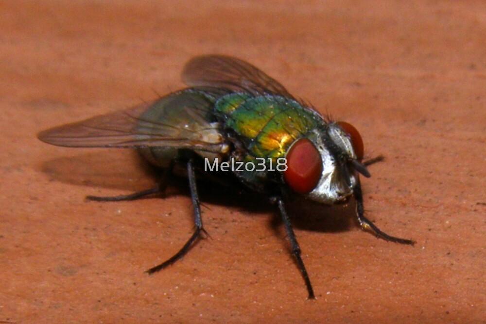 Rainbow Bug by Melzo318