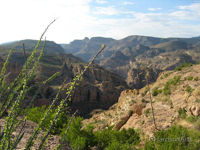 Superstition Mountains, Arizona, USA by BHarrisonArts