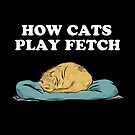 How cats play fetch by Crowden