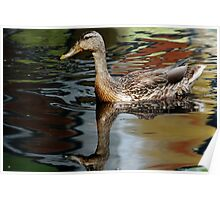 Quot Mallard Moment Quot By Debbie Oppermann Redbubble