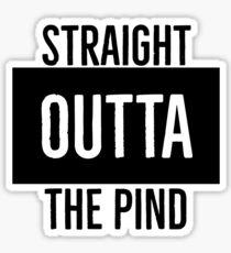 Straight Outta the Pind Sticker