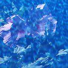 Violet Satin Reflections by Debbie Oppermann