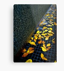 Autumn Grate Metal Print