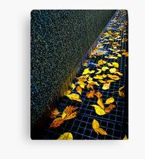 Autumn Grate Canvas Print