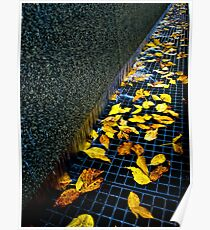 Autumn Grate Poster