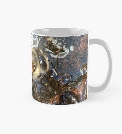 African Bee (Apis mellifera Scutellata) Mug